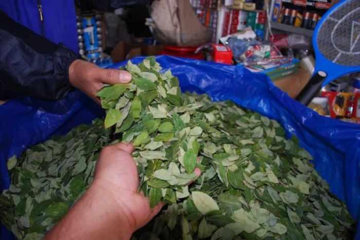 Bermejo desbordada de coca por baja venta a la Argentina