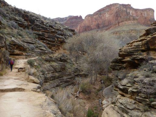 Jesse (L) hiking up the Bright Angel trail