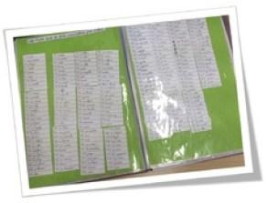 Son CE1 ( affichages, ex, dictées, jeux, fiches élèves)