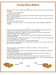 turkey story rubric