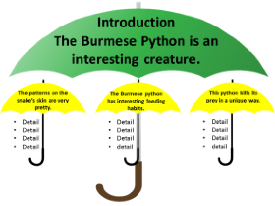 topic sentence umbrellas python example