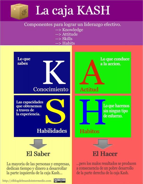Explicacion del modelo KASH