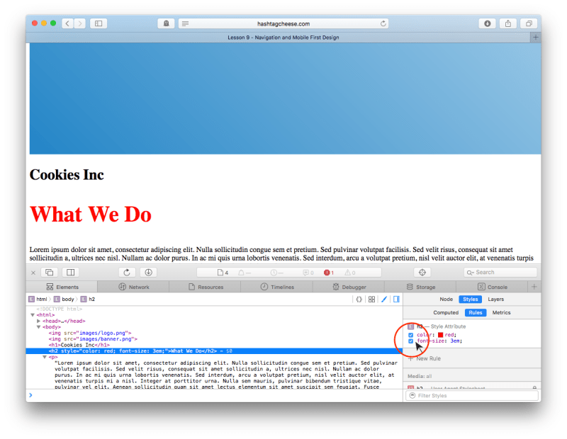Safari Inspect Element showing CSS checkboxes