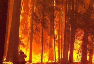 incendio-espana-990x460