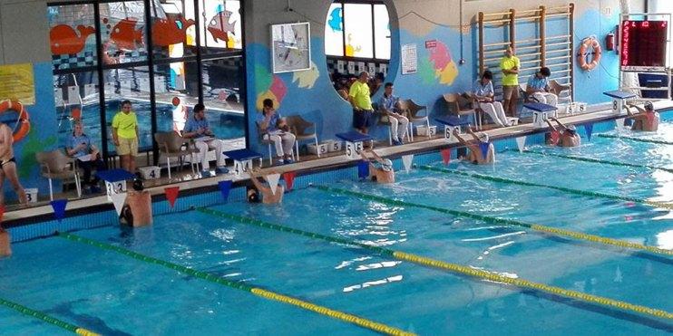 elche club natacion 2