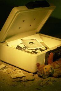 memories, eldercare