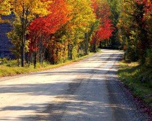 autumn_road2