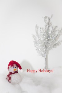 Merry Christmas from everyone at EldercareABC
