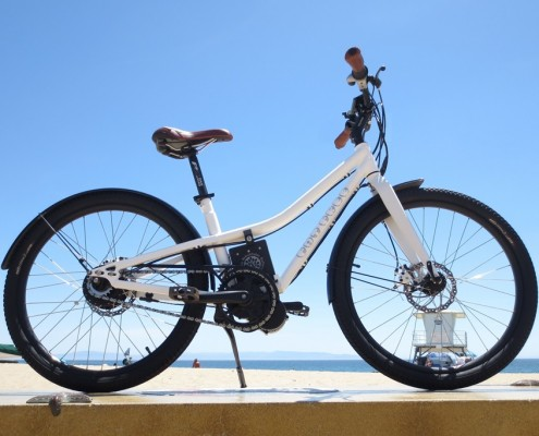 NTS Works Fat Free electric bike