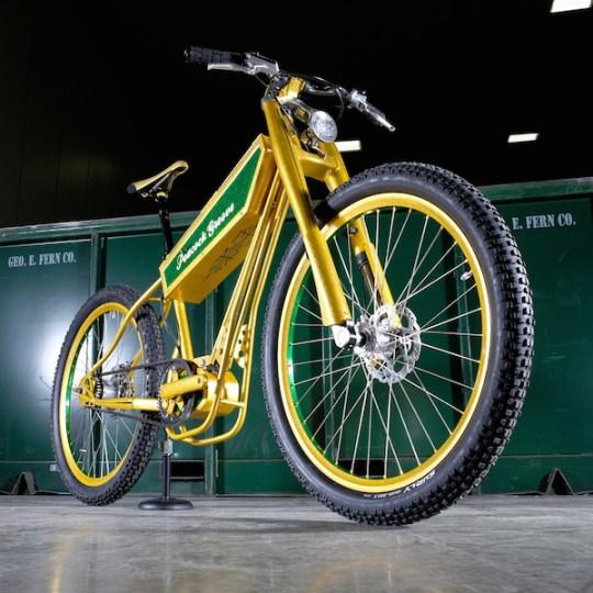 peacock groove electric bike 1
