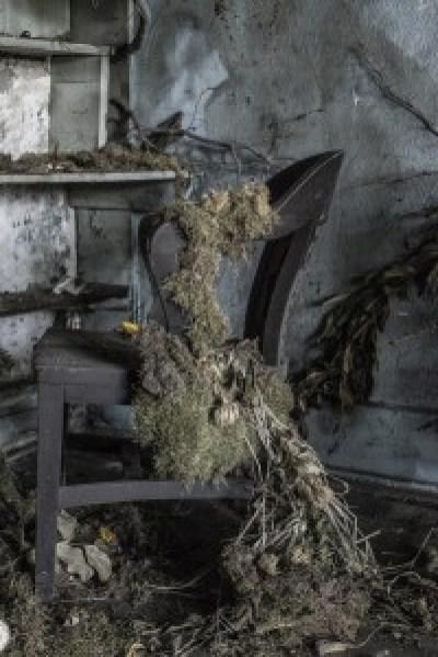 """""""Flower House Detroit 38"""" by Jude Walton"""