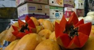 Extraen los compuestos nutracéuticos presentes en la cáscara, con la intención de conservarlos y agregarlos a suplementos alimenticios.