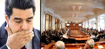 La OEA exige al Gobierno garantizar el derecho a la vida el 1S