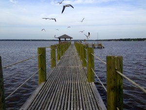 A pier in Weeks Bay, Alabama. Credit: David Roche, ELI.
