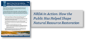 NRDA in Action Image