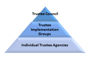Trustee Governance Graphic