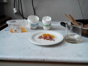 Nutrizione nel gatto cibo secco e cibo fatto in casa 1