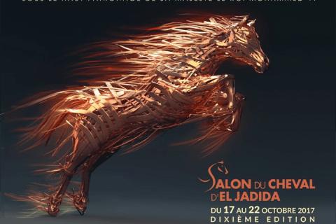 Dixième édition du Salon du Cheval D'El Jadida…du 17 au 22 octobre 2017, sous le thème : « Le Salon Du Cheval :10 ans de fierté et passion »