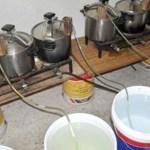 3 tonnes d'eau de vie (Mahia) saisies à Tnine Chtouka.