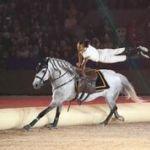 Le Salon du Cheval d'El Jadida, un lieu propice pour la promotion de la culture et du sport