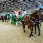 Le Salon du Cheval d'El Jadida accueille une riche programmation culturelle
