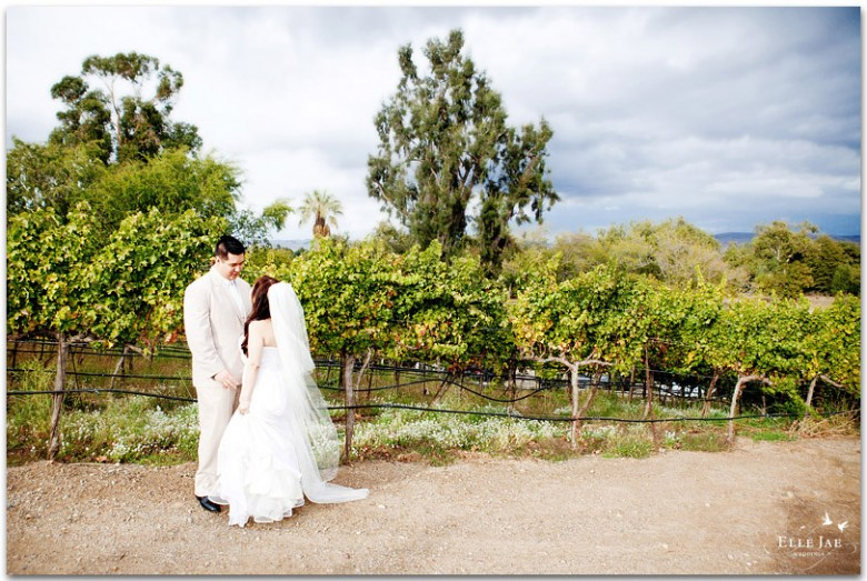 Murrietas Well Wedding wine country