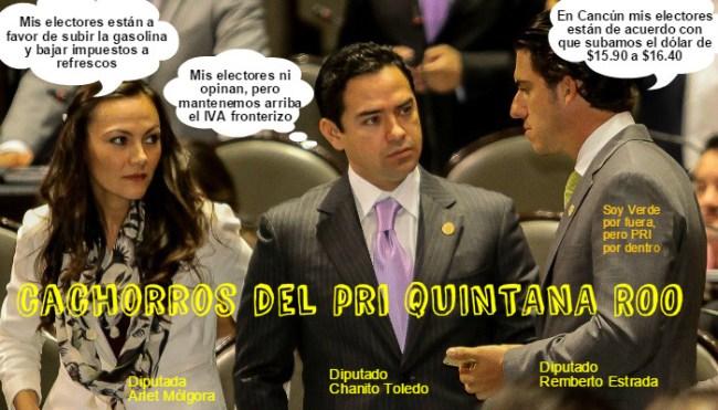 cachorros  del PRI Quintana Roo