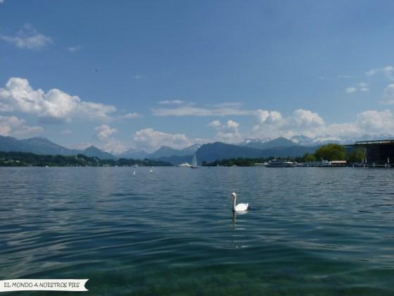 lago 4 cantones lucerna