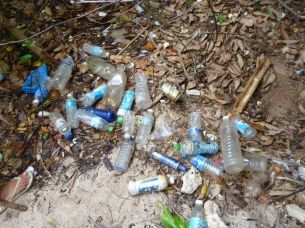 Plastic bottles left behind by picnickers or brought by the waves.