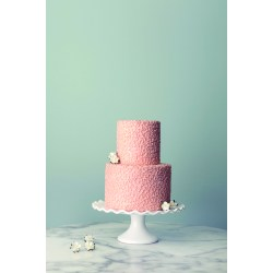 Magnificent Small Wedding Cakes Paris Small Wedding Cakes Publix Small Wedding Cakes Ago Intimate Ceremonies Elope