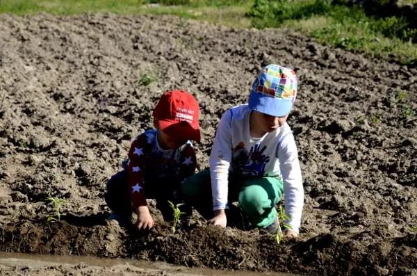 Fotos del Valle del Jerte, Agroturismo El Vallejo Teo y Oriol