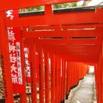 Toriis rojos del Hie Jinja de Tokio