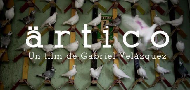 Pirámide Films distribuirá Artico