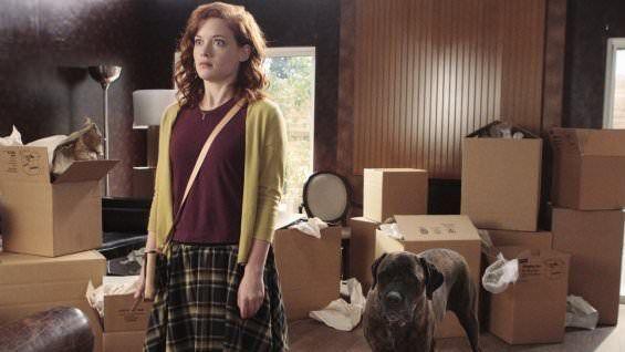 Upfronts 2014: ABC cancela The Neighbors, Suburgatory, Trophy Wife, Mixology y Super Fun Night