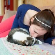 Feliway - cómo introducir un nuevo gato en casa