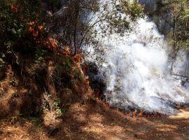 Piden apoyo para brigadistas que combaten incendio en el Nevado