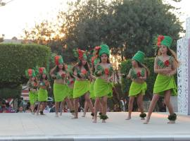Listo el festival del día mundial de la danza