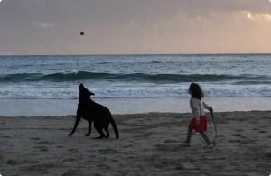 POST-La-Barra-Palermo-Kapstadt-mit-Kind-3_9966-kind-hund