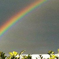 Der Regenbogen wartet nicht