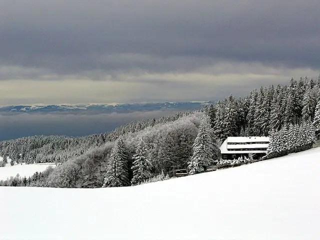 640px-Schwarzwaldschnee