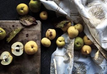 Die Quitte- Pektinwunder und Gesund-Obst