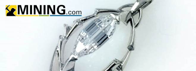 Diamond found at Arkansas Park expected to fetch $1 million