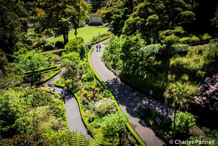 Explore New Zealand's Capital City