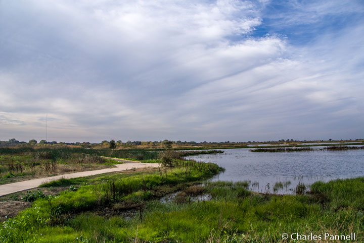 The Lost Slough Trail at the Consumnes River Nature Preserve