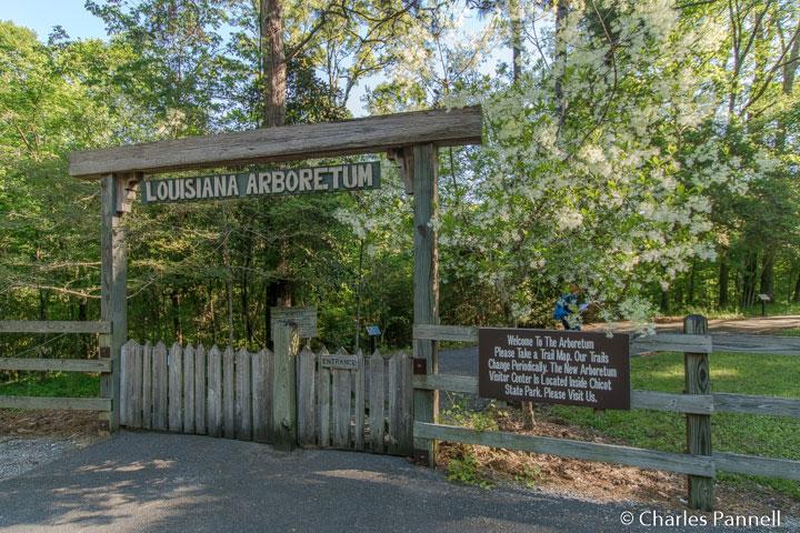 Entrance to the Louisiana State Arboretum