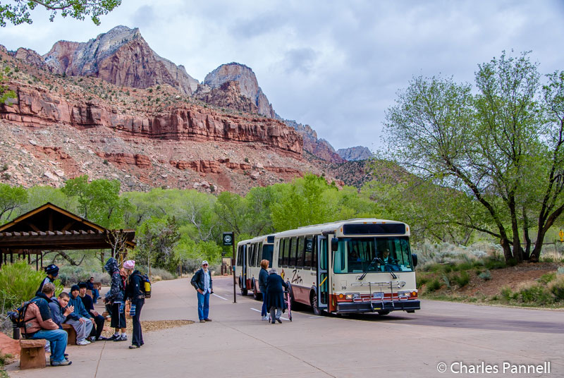 Shuttle bus in Zion National Park, Utah
