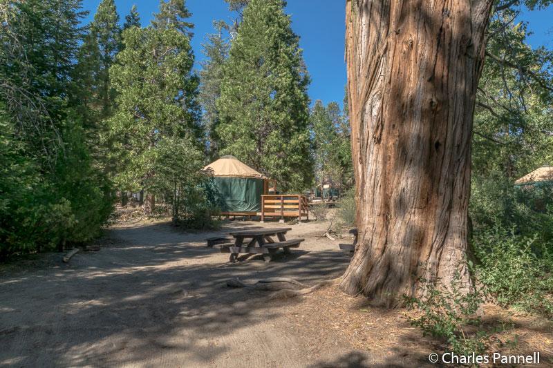 Picnic area at campsite 2