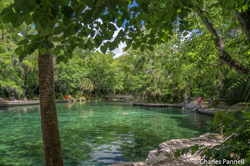 The pool at Wekiwa Springs
