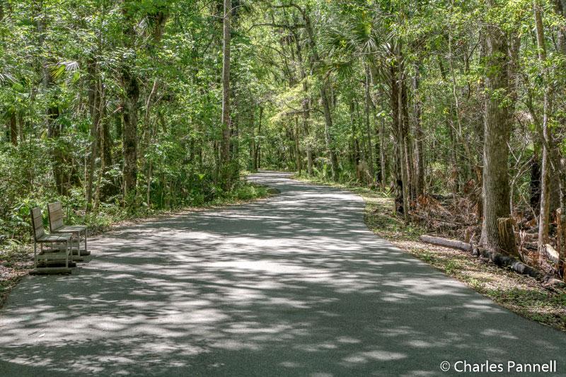 Pepper Creek Trail