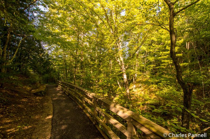 Trail to Munising Falls